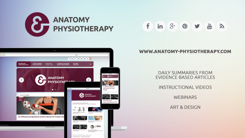 anatomy physiotherapy com small